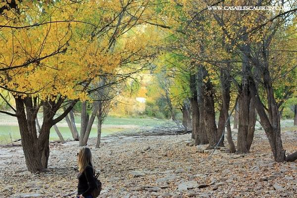 otoño cuenca