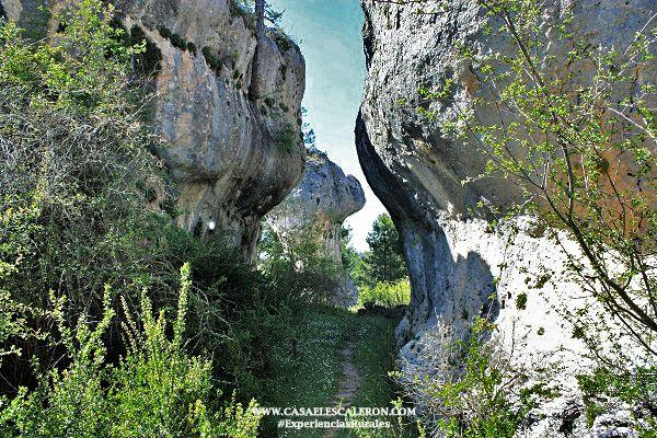 las formaciones rocosas se deben a la erosión sufrida tras miles de años