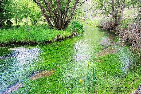 El Arroyo del Rincón nace en el rincón de Uña