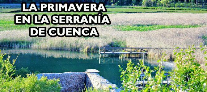 La explosión de la primavera en la Serranía de Cuenca