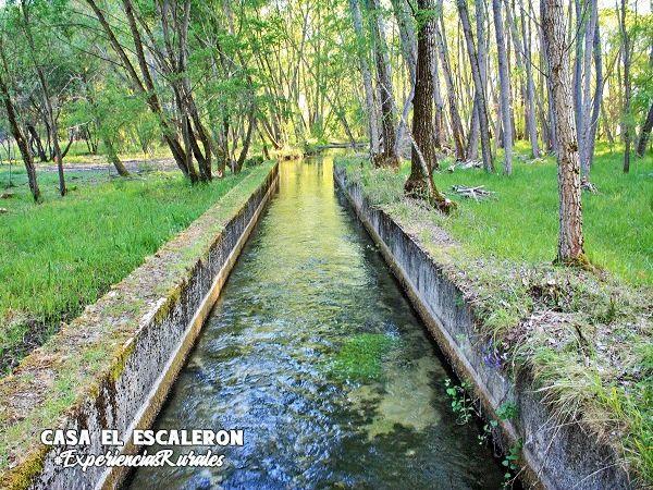 canal de royo frío que conduce el agua desde el Rincón de Uña hasta la laguna