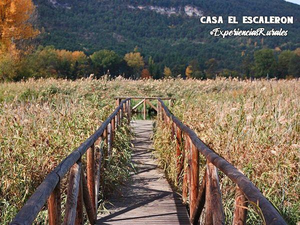 Una de las pasarelas de madera de la laguna de uña